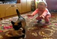 Bé khóc nhè khi mèo mẹ cắp mèo con đi mất